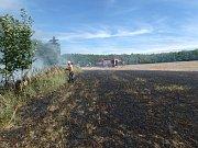 Oheň se částečně rozšířil i na okraj blízkého lesa.