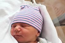 Pavel Brejcha se narodil 5. února v 1:29 rodičům Nikole a Pavlovi z Oseka. Po příchodu na svět ve FN na Lochotíně vážil jejich synek 3870 gramů a měřil 53 centimetrů.