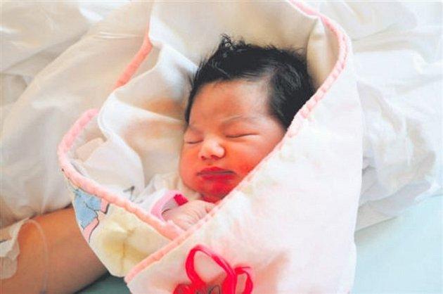 Sofie MALÍKOVÁ z Hrádku přišla na svět 29. března v 10 hodin a 22 minut. Manželé Marie a David věděli dopředu, že jejich první dítě bude holčička. Malá Sofinka vážila při narození 3840 gramů, měřila 51 cm.