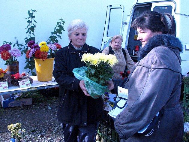 Obchodníci dušičkové zboží nezdražili. Snaží se tak udržet zákazníky. Irena Paseková (na snímku vpravo) byla s koupí ve stánku Aleny Hanzlíčkové spokojená. Pořídila tu pětihlavou chrizantému za 120 korun.