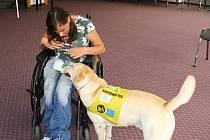 Lucie Faldusová s asistenčním psem Falcem  jsou sehraný tým. Na snímku Falco předvádí, jak umí podat kolíčky na prádlo.