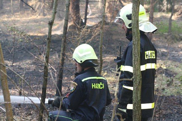 Loňský požár u Pavlovska zničil několik hektarů lesa.