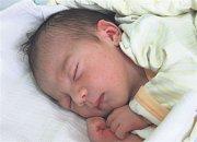 Tereza FALCOVÁ z Holoubkova se narodila 27. června, 11 minut po 12 hodině. Maminka Dagmar a tatínek Jan věděli dopředu, že si domů z porodnice ponesou malou holčičku. Terezka vážila při narození 3100 gramů, měřila 49 cm. Tatínek byl při porodu na sále pom