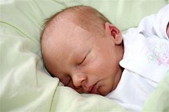 Jakub HOUŠKA z Volduch bude mít ve svém rodném listu datum narození 26. ledna. Přišel na svět ve 23 hodin a 17 minut. Maminka Michaela a tatínek Josef znali pohlaví prvního dítěte dopředu. Kubík vážil 2750 gramů, měřil 48 cm. Tatínek byl na sále pomáhat.