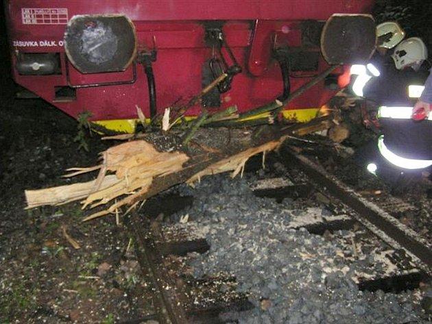 Padlý strom zkomplikoval v úterý  časně dopravu na železnici.