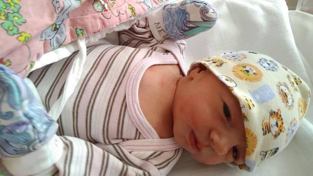 Aneta LOUKOTOVÁ z Oseka u Rokycan přišla na svět 9. února 2019 ve FN Lochotín. Sestřičky ji na sále navážily 3 190 gramů, naměřily 49 cm. Pyšní rodiče Ondra a Veronika Loukotovi už mají doma prvorozeného syna Matěje.