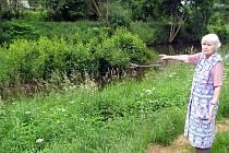 Drahomíra Fáberová ukazuje, jak se ostrůvek uprostřed řeky Klabavy zaplnil keři.  Ve svých devětasedmdesáti letech už si s problémem sama prý neporadí.