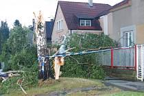 ŠTĚSTÍ V NEŠTĚSTÍ měli v úterý před 22. hodinou obyvatelé domu v ulici nad rokycanským nádražím. V silném větru se tu zlomila statná bříza. Poškodila plot, ale větve se zastavily pár decimetrů před okny.