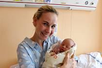 VIOLA KOSOVÁ z Rokycan bude mít ve svém rodném listu datum narození 8. února. Přišla na svět dopoledne, v deset hodin a čtyřicet šest minut. Manželé Iva a Daniel znali pohlaví svého prvního dítěte dopředu. Malá Violka se narodila s mírami 2810 g a 47 cm.
