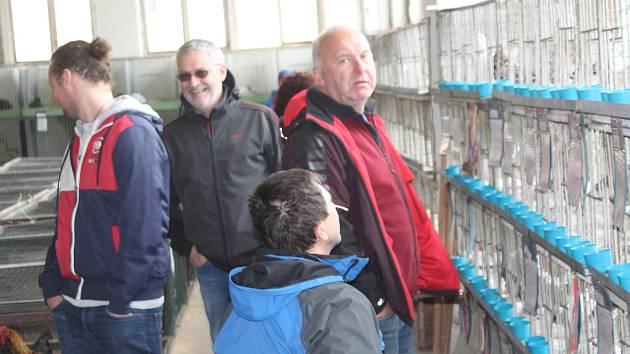 Výstava chovatelů na mirošovské pouti