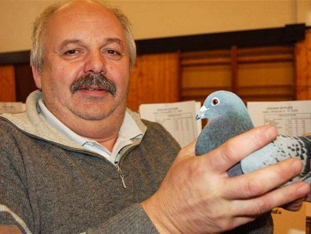 Výstava poštovních holubů se uskutečnila v sobotu v Oseku u Rokycan.