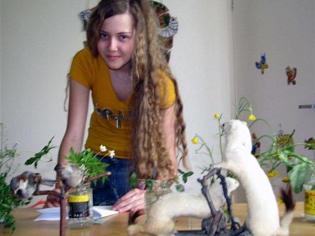 V DDM v Rokycanech se utkalo šestnáct dívek a chlapců ze šestých a sedmých tříd a jim odpovídajících ročníků gymnázia. Měli kromě ponávání rostlin a živočichů – na snímku se úkolem zabývá Veronika Karlová ze ZŠ TGM – zvládnout i teoretickou část.