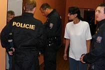 Policisté se zaměřili na ubytovny v Rokycanech, Strašicích a Dobřívě. Čtyři osoby pokutovali.