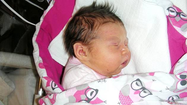 Amálie Sazimová z Mirošova se narodila 23. března 2019 v hořovické porodnici, vážila pěkných 3,98 kg a měřila 49 cm. Z Amálky se radují manželé Markéta a Vladimír, bráškové Dominik (3 roky a 7 měsíců) a Tobiáš (2 roky a 4 měsíce). Foto: Jiřina Marečková