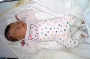 OLÍVIE HANA VLČKOVÁ z Hrádku se narodila v hořovické porodnici 27. února. Přišla na svět v devět hodin a čtyřicet sedm minut. Z jejího narození se radovali maminka Alena, tatínek Míla a starší bráška Miloušek Kamil (21 měsíců). Váha 3970 g, 51 cm.