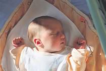 Veronika VENĚČKOVÁ z Rokycan se narodila 4. září, tři minuty po čtvrté hodině ráno. Manželé Naďa a Radek znali pohlaví miminka dopředu. Na malou Verunku doma čeká šest sourozenců. Při narození vážila 3100 gramů, měřila 48 cm.