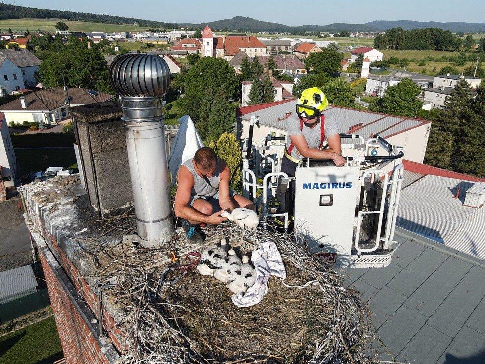 Čapí hnízdo v Oseku je pod dohledem...