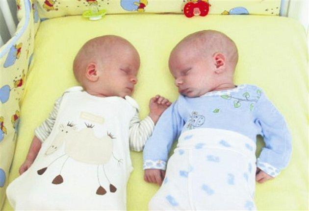 Šimon a Štěpán Čermákovi se na sále rokycanské porodnice narodili  22. března. Šimon přišel na svět v 16 hodin a 33 minut, vážil 3100 gramů a měřil  50 cm. Štěpán se narodil jako druhý v 16 hodin a 55 minut. Jeho porodní váhy byla  3520 gramů, měřil  51 c