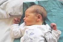Tomáš FOREJT z Rokycan přišel na svět 19. října v 19 hodin a 26 minut. Manželé Kateřina a Roman znali pohlaví svého prvního miminka dopředu. Tomášek vážil 3340 gramů, měřil 51 cm.
