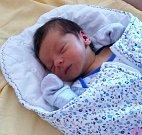 FRANTIŠEK ŠPINKA z Hrádku se narodil v plzeňské porodnici 17. srpna v 6:06 hodin rodičům Anně a Martinovi. Rodiče věděli dopředu, že jejich prvorozené dítě bude chlapeček. Malý František vážil při narození 3070 gramů, měřil 49 cm.