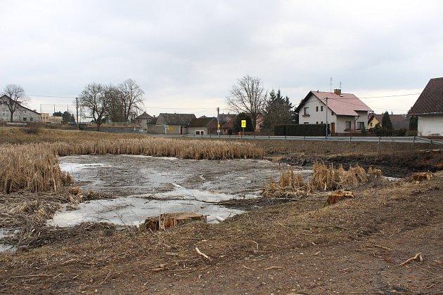 Kněžský rybník v Oseku čeká revitalizace.