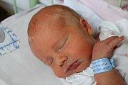 DAN ŠVAMBERG z Blovic přišel na svět 20. března v šest hodin ráno. Manželé Klára a Petr už mají doma prvorozeného syna Iva (6,5 roku) a věděli, že i druhé dítě bude chlapec. Daneček vážil 3320 gramů, měřil 49 cm.