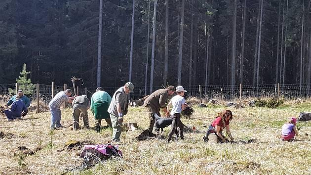Ejpovičtí vyrazili na lesní brigádu.