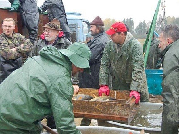 Rybník Bláža na okraji Příkosic byl v sobotu dopoledne dějištěm výlovu.