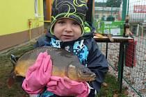 Tříletý Štěpánek si potěžkal u Penny marketu kapra z Pačejova.