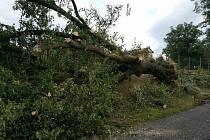 Následky bouřky
