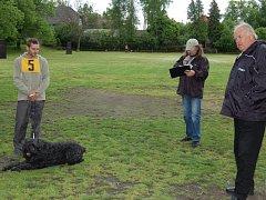 PAVEL ČÍŽEK (vlevo) se svým psem byl jedním z aktérů sobotní soutěže v Rokycanech. Naslouchá hodnocení rozhodčího Ulče (uprostřed), vpravo je domácí Zdeněk Fibrich.