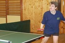 Západočeský pohár stolních tenistů se na Rokycansku týkal 48 hráčů. Okresní kolo se uskutečnilo v sobotu v Oseku, kam zamířila i Jaroslava Janečková ze Spartaku Strašice.