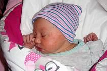 Šárka Valdhansová – Kateřině Plzenské a Jaroslavu Valdhansovi z Břas, se 24. listopadu 2019 v hořovické porodnici narodila dcerka Šárka Valdhansová s váhou 2 860 gramů a mírou 47 cm. Sestřičku bude v kočárku vozit o jedenáct let starší Natálka Plzenská.