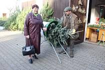 Prodej stromků v Rokycanech v areálu lesů pod Děkanským rybníčkem.