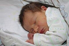 Adam CIPRA z Rokycan se narodil 3. února v půl desáté večer. Man- želé Lenka a Jan také věděli dopředu, že jim napoprvé čáp přinese malého chlapečka. Adámek vážil úctyhodných 4210 gramů, měřil 53 cm. Tatínek byl na sále svojí ženě oporou.