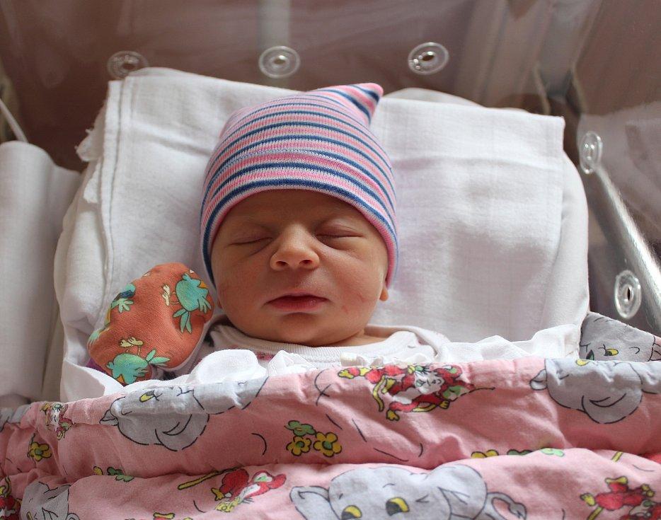 Olívie Bouzková z Plzně se narodila v plzeňské porodnici na Lochotíně 4. srpna v 7:50 hodin (3260 g) rodičům Ladislavě a Josefovi. Na sestřičku se doma těšil dvouletý Josífek.
