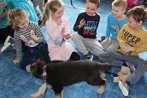 Policejní psovod společně se čtyřnohým parťákem dorazil včera ráno do školky v Litohlavech. Představil tříměsíční štěňátko Armina.