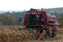 Mnohé zemědělské firmy  plánovaly, že sem budou dodávat část produkce kukuřice a obilí. Ilustrační foto
