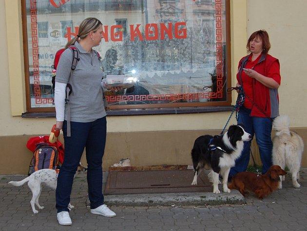 Centrum okresního města patřilo včera po patnácté hodině členům Agility klubu. Při akci Hromádka upozorňovali veřejnost a zejména majitele čtyřnohých přátel na povinnost úklidu psích výkalů.
