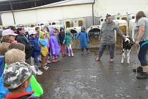 Pohlazení telátka při návštěvě Osecké společnosti zanechalo v dětech ze ZŠ Mlečice hluboký zážitek.