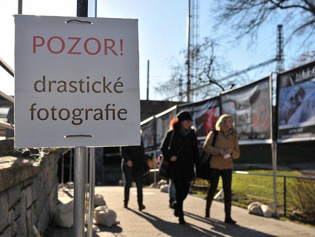 Výstava v okresním městě - ilustrační foto