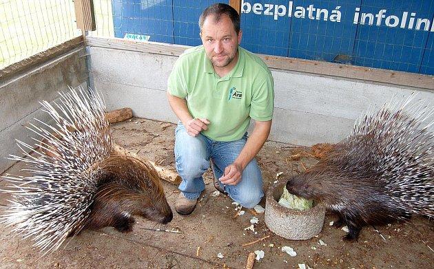 Lubomír Kesner z Oseka organizuje při voldušské pouti okresní a místní výstavu drobného domácího zvířectva. V restauraci U Kodlů  představí ale i exotické tvory, jako například dvojici krásných dikobrazů.