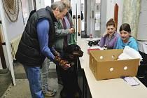 Možná proto, aby nevážil cestu do Hrádku zbytečně, dohlížel na průběh registrace spolu s páníčkem i rotvajler jménem Fram. Toho manželé Petrovi přivezli na mezinárodní výstavu psích plemen z hlavního města.