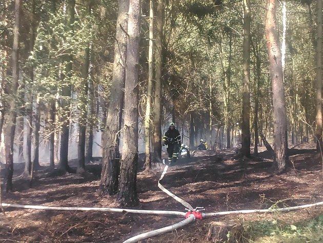 Požár pole a lesa u Pavlovska na Rokycansku