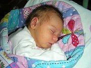 ADÉLA TOMÁŠKOVÁ z Chomle se narodila ve čtvrtek 13. července 2017 v hořovické porodnici U Sluneční brány manželům Janě a Vladimírovi Tomáškovým. Adélka vážila po příchodu na svět 3050 gramů.