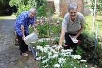 Pěstováním květin si obyvatelé Penzionu zpříjemňují nejen čas, ale i prostředí, v němž žijí.