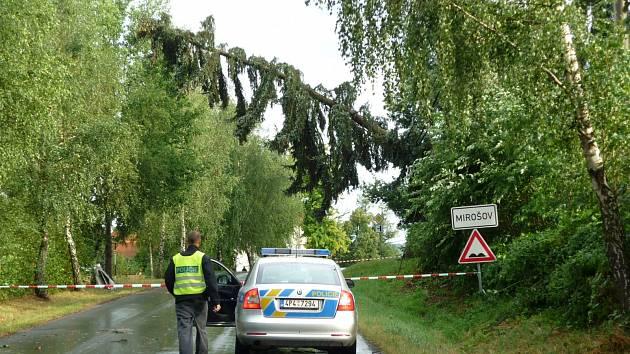 Vinu za odkloněním dopravy nesl více jak osmdesátiletý strom, který visel nad cestou.