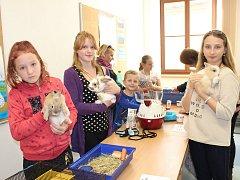 SVÉ MAZLÍČKY v rámci školní výstavy představili i Dominika a Andrea Svaškovy, Andrea Ulmanová, Kuba Monhart a Daniela Jedounová. V jejich případě šlo o zakrslé králíčky.