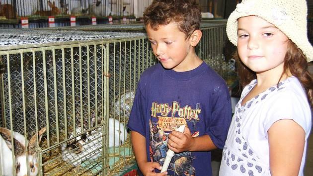 Bezmála dvě stě králíků si prohlédli Pepíček Šindler (vyhrál jednoho ušáka v tombole) a Evička Kroftová.
