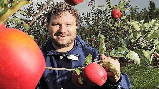 Produkce jablek závisí na mnoha faktorech. Tím nejvýznamnějším je pochopitelně počasí a farmář Richard se o tom přesvědčil v pozitivním i negativním smyslu. Pro příklad nemusíme chodit daleko. Loňský rok byl úrodou mimořádný a desítky brigádníků (ovoce tr
